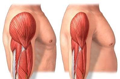 somatodrol przyrost masy mięśniowej